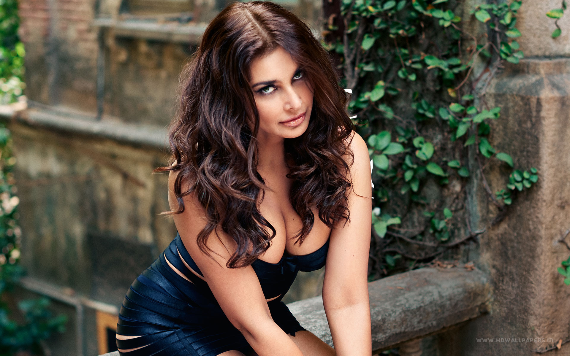 Sizzling Pictures Of Veerappan Movie Actress Lisa Ray